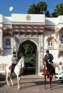 rohet-horses